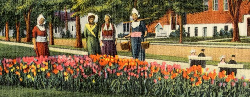 Postcard showing women in traditional Dutch clothing, and tulips, in Michigan.